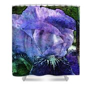 Iris With Buds 9821 Idp_2 Shower Curtain