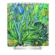 Irises Ala Van Gogh Shower Curtain