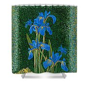 Irises Blue Flowers Lucky Love Frog Friends Fine Art Print Giclee High Quality Exceptional Colors  Shower Curtain