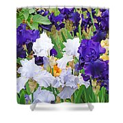 Irises Flowers Garden Botanical Art Prints Baslee Troutman Shower Curtain