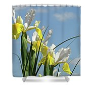 Irises In Blue Sky Art Print Spring Iris Flowers Baslee Troutman Shower Curtain