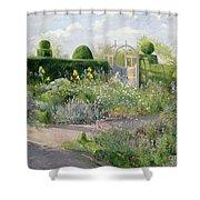 Irises In The Herb Garden Shower Curtain