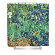 Irises Shower Curtain by Vincent Van Gogh