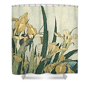 Irises With A Grasshopper Shower Curtain