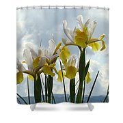 Irises Yellow White Iris Flowers Storm Clouds Sky Art Prints Baslee Troutman Shower Curtain