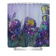 Irises2 Shower Curtain