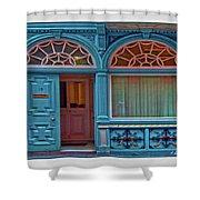 Irish Door Shower Curtain