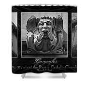 Irish Gargoyles Triptych Shower Curtain
