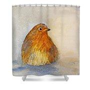Irish Robin In The Snow Shower Curtain