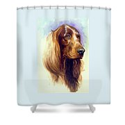 Irish Setter Shower Curtain