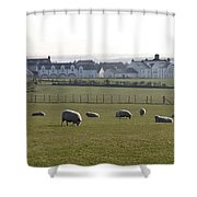Irish Sheep Farm Shower Curtain