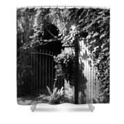 Iron Gate And Wooden Door Shower Curtain