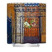 Iron Gate Shower Curtain