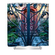 Iron Scroll Entrance Shower Curtain