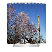 Ironwood And Saguaro Shower Curtain
