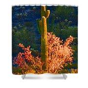 Ironwood Saguaro Dance - Bold Shower Curtain