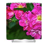 Irresistible Rose - Paint Shower Curtain