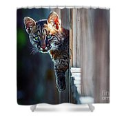 Is It Me You're Looking For  Shower Curtain