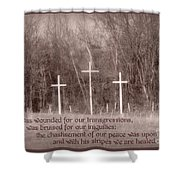 Isaiah 53 5 Shower Curtain