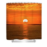 Island Of The Sun Shower Curtain