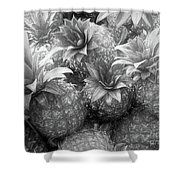 Island Pineapples Shower Curtain