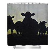 It Aint Texas Shower Curtain