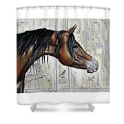 Arabian 5 Shower Curtain