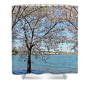 It Must Be Spring In Washington Shower Curtain