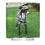 Italian Greyhound Army Shower Curtain