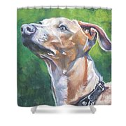 Italian Greyhound Shower Curtain by Lee Ann Shepard