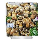 Italian Market Porcini Mushrooms  Shower Curtain