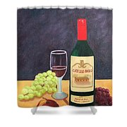 Italian Wine And Fruit Shower Curtain