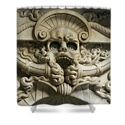 Italy, Florence, Deatil From San Shower Curtain