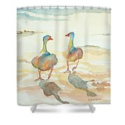 It's A Ducky Day Shower Curtain