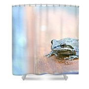 It's A Good Day To Be A Frog Shower Curtain