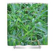 It's A Jungle Out There Shower Curtain