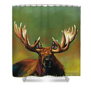 Its All About The Rack Shower Curtain