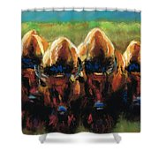 Its All Bull Shower Curtain