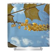 Its Blossoms Time Shower Curtain