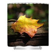 Its Fall Shower Curtain