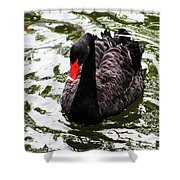 Its Good To Be Different. Shower Curtain