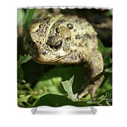 It's Lonely Being Green Shower Curtain