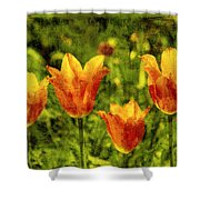 It's Springtime Again Shower Curtain