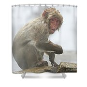 It's Way Too Cold Shower Curtain