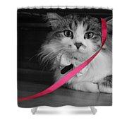 Itz A Cat Shower Curtain