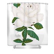 Ivory Rose Shower Curtain