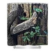 Ivy And Tree Shower Curtain