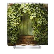 Ivy Door Shower Curtain