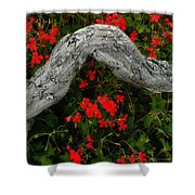 Ivy Geraniums And Log Shower Curtain