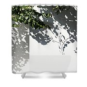 Ivy Lace -  Shower Curtain